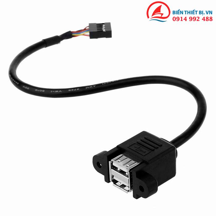 Cáp chuyển đổi 9pin USB Header Motherboard to 2 USB Type A